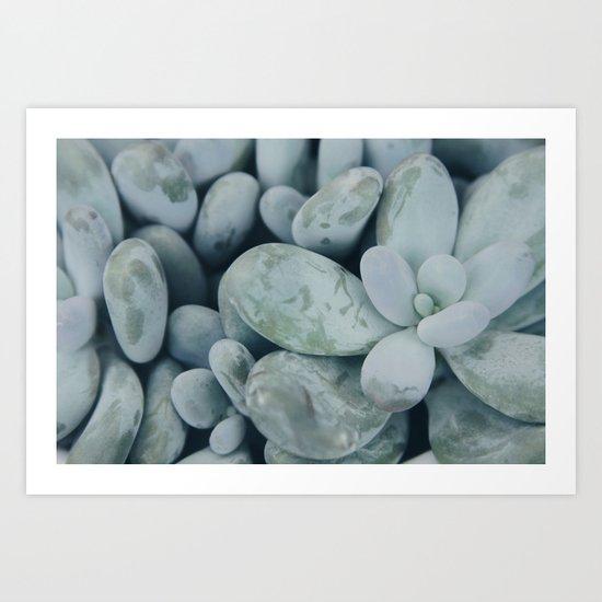 Moonstones Art Print