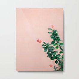 Floral photography print | Green on coral | Botanical photo art Metal Print