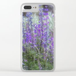 Color in the High Desert Clear iPhone Case