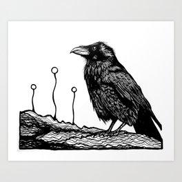 Jovial Raven Art Print
