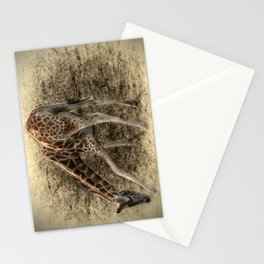 Take a Bow Stationery Cards