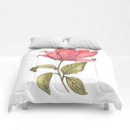 Flower Illustration / Magnolia Comforters