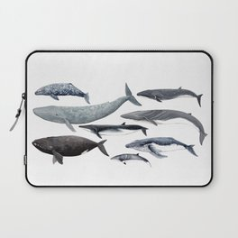 Whales and right whale Laptop Sleeve