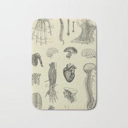 Vintage Anatomy Print Bath Mat