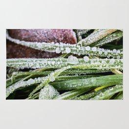Frozen grass Rug