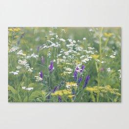 Where the Wildflowers Grow Canvas Print