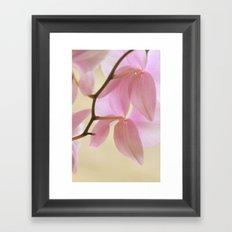Orchid Cascade Framed Art Print