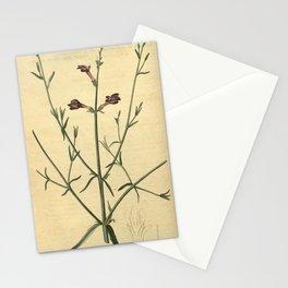 Flower 2199 dodartia orientalis Oriental Dodartia10 Stationery Cards