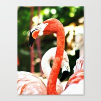 hot pink Canvas Prints featuring Hot Pink by Colin's Workshop