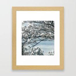 Snowy View Framed Art Print