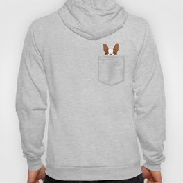 Pocket Boston Terrier - Red Hoody