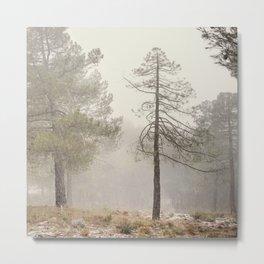 """Walking..."". Snowing in the mountains Metal Print"