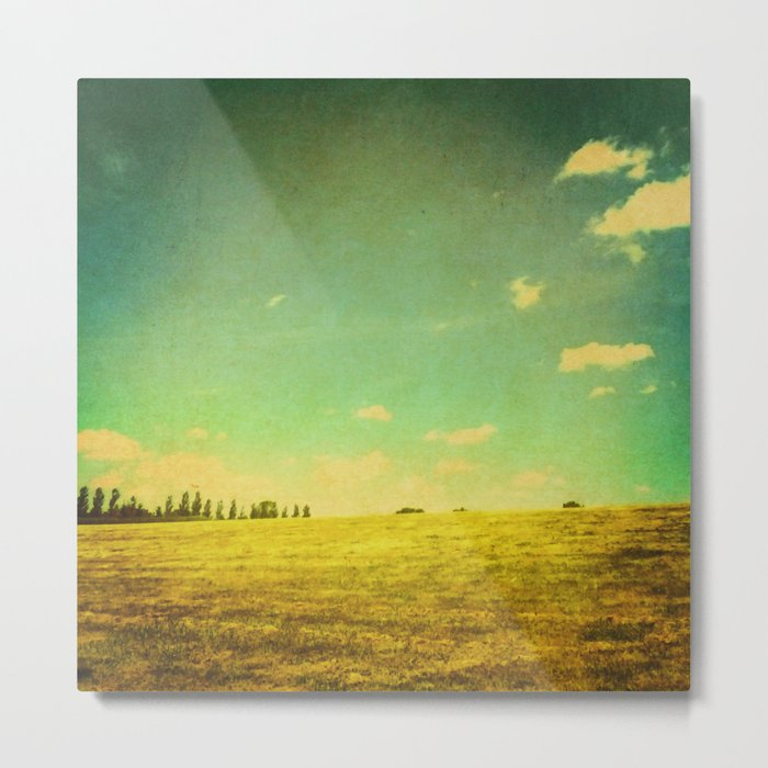 A Summer Day Metal Print