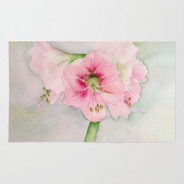Pink hippeastrum Rug