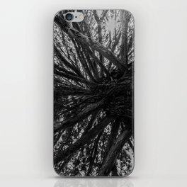 Tree, New Zealand iPhone Skin