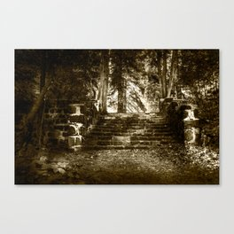 Ruin, Very Old Steps in Forest Canvas Print