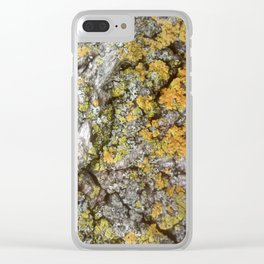 Bark and Lichen Clear iPhone Case