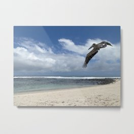 Pelican above the beach Metal Print