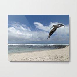 Pelican above the beach Metal Print