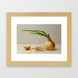 Sliced onion Framed Art Print