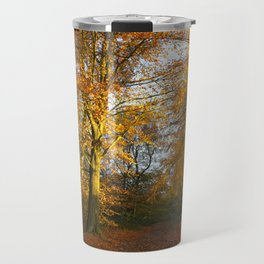 Forest Walk With Dazzling Autumn Colours Travel Mug