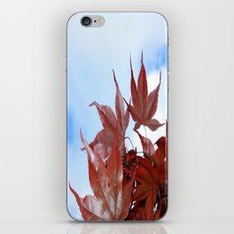 red leaf sky iPhone Skin