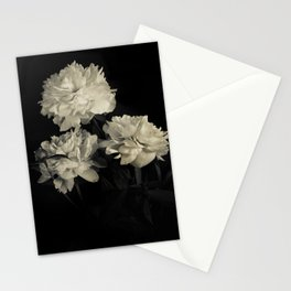 White peonies2 Stationery Cards