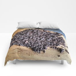 Chopped Comforters