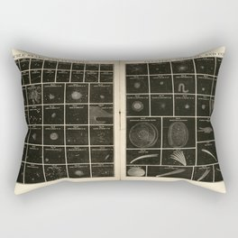 Double Stars and Clusters; Cluster, Nebulae and Comets (1856) Rectangular Pillow