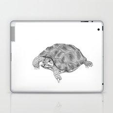 Little tortoise Laptop & iPad Skin