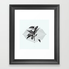 Still Life No.1 Framed Art Print