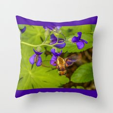 Hummingbird Moth Throw Pillow