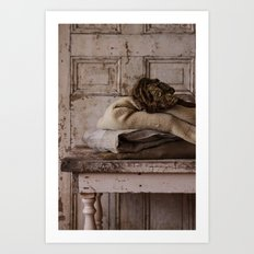 Les Tissus II Art Print