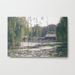 Leaves at the Summer Palace in Beijing, China Metal Print