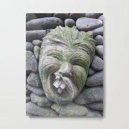 Funny Face in Bali (2010c) Metal Print