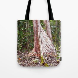 Buttress root in the rainforest Tote Bag
