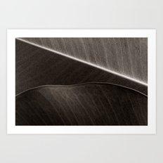 'Layered Leaves' Art Print