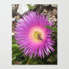 Bee Doing Business Canvas Print