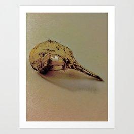 Never Left the Birdfeeder Art Print