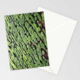 Tea trees, Munnar Tea Plantation, Kerala, India Stationery Cards