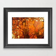 Fire  Fantasy Framed Art Print