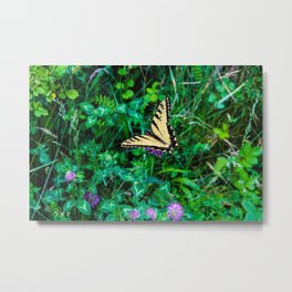 A Butterfly Using Its Wings Metal Print