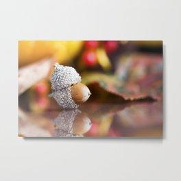 Autumn Acorns 7 Metal Print