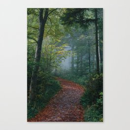 The Forest Path (Color) Canvas Print