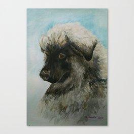 A Tribute to Luca (a Shiloh Shepherd) Canvas Print