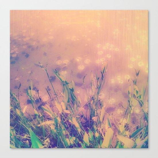 Lotus Pond and Spring Sunshine Canvas Print