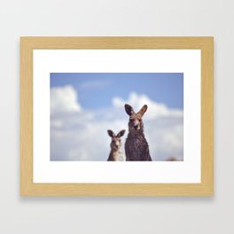 I See You Kangaroo Framed Art Print
