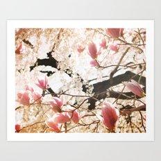 Spring Paradise Art Print