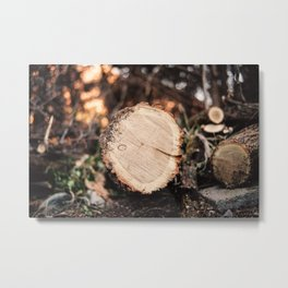 Meeting a trunk Metal Print