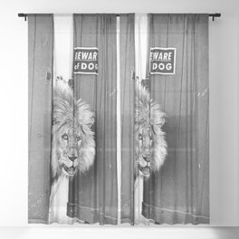 Beware of Dog black and white photograph of attack lion humorous black and white photography Sheer Curtain